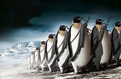 penguins-with-guns.jpg