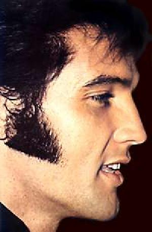 Sideburns would continue in this vain for the remainder of the 19th century,