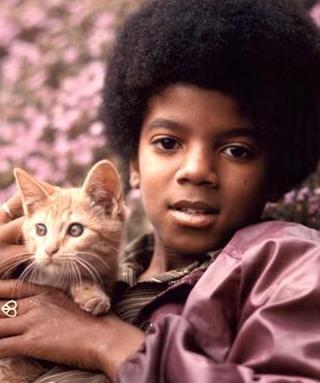 Michael Jackson cat1971